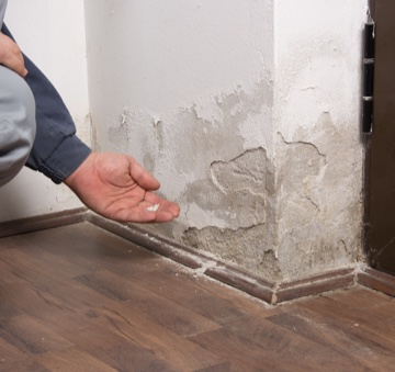 Walls with mold that need condo restoration in Millersville, MD